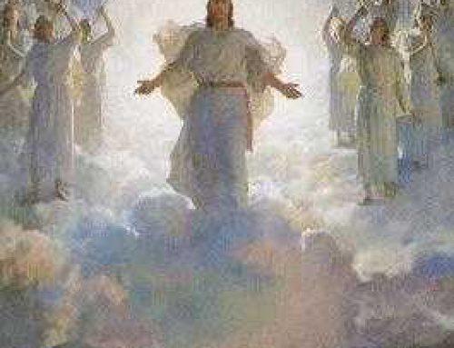 Pero cuando venga el Hijo del hombre ¿encontrará esta fe en la tierra?
