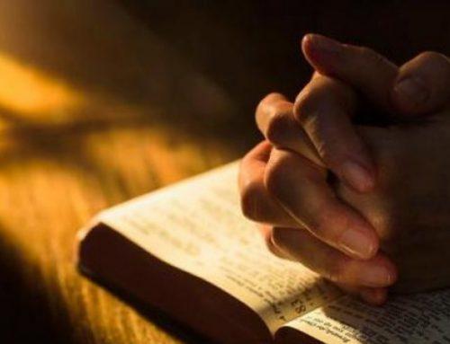Hay que orar siempre y sin desanimarse